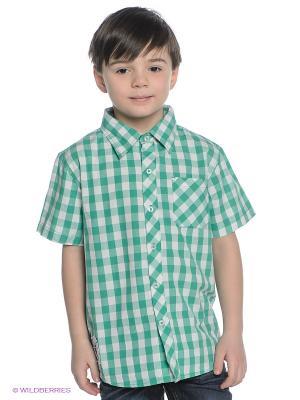 Рубашка Wooloo Mooloo. Цвет: зеленый, белый