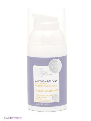 Сыворотка для лица сухой и чувствительной кожи Natura Siberica. Цвет: белый, фиолетовый