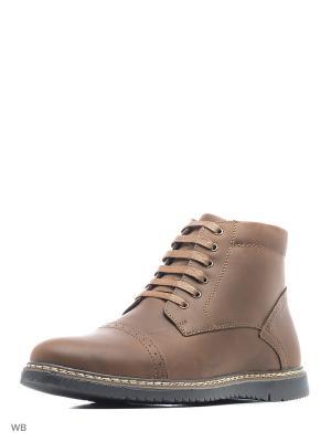 Ботинки Schtosen. Цвет: коричневый