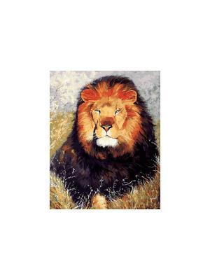 Живопись на холсте 40х50 см. Царь зверей Белоснежка. Цвет: белый