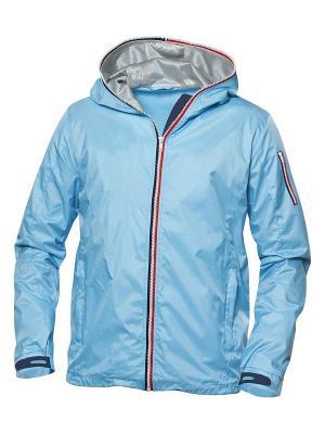 Куртка Сибрук мужская Clique. Цвет: голубой