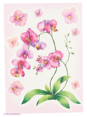 Акварельная орхидея DECORETTO. Цвет: зеленый, сиреневый