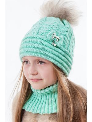 Комплект: шапка, шарф RACCOON YELLOW. Цвет: светло-зеленый