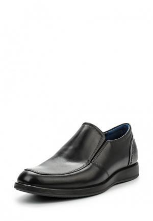 Ботинки классические Ecco. Цвет: черный