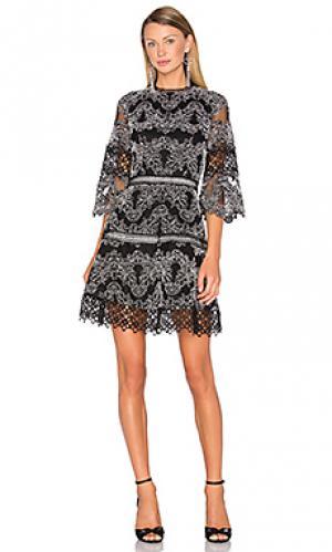 Платье karina Alexis. Цвет: black & white