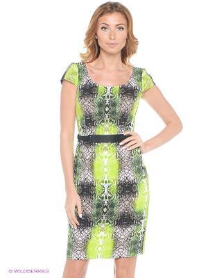 Платье London Times. Цвет: зеленый, черный