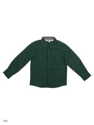 Рубашка Modis. Цвет: темно-зеленый, черный