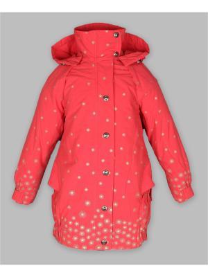 Куртка Arista. Цвет: малиновый