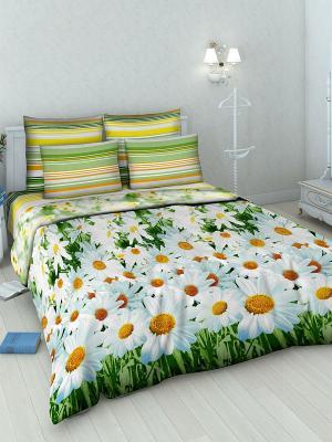 Комплект постельного белья из бязи Евро Василиса. Цвет: голубой, желтый, белый, зеленый
