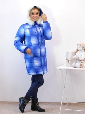 Куртка Адель. Цвет: лазурный, белый