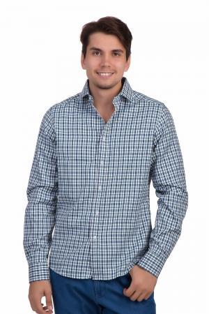 Рубашка с длинным рукавом Pezzo. Цвет: разноцветный