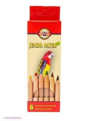 Набор цветных карандашей  утолщенный корпус Jumbo Natur (6 цветов) Koh-i-Noor. Цвет: желтый, зеленый, коричневый, красный, синий, черный