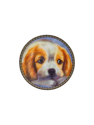 Тарелка декоративная Рыжий пес Elan Gallery. Цвет: оранжевый, черный