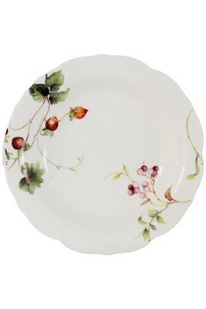 Набор из 2-х суповых тарелок Colombo. Цвет: мультицвет