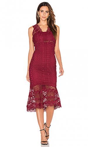 Платье миди odyssey Bardot. Цвет: красное вино