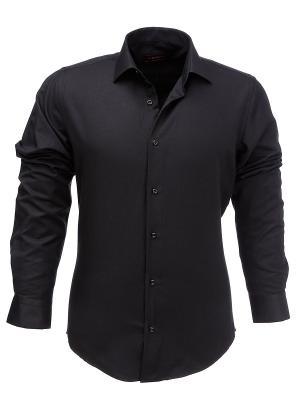 Рубашка BIRIZ. Цвет: черный