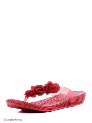 Туфли для купания женсике из ПВХ композиции BRIS. Цвет: красный