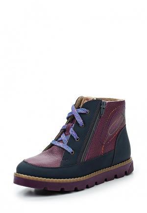 Ботинки Tapiboo. Цвет: разноцветный