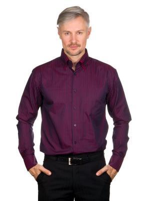 Рубашка GREG. Цвет: красный, синий