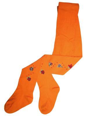 Колготки Master Socks. Цвет: оранжевый