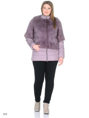 Куртка PRIMA WOMAN. Цвет: фиолетовый
