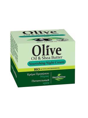 Герболив ночной питательный крем для лица с маслом ши (карите), 50мл Madis S.A.. Цвет: оливковый
