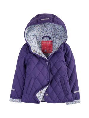 Куртка стеганая Endo. Цвет: фиолетовый