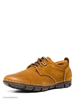 Ботинки Shoiberg. Цвет: коричневый