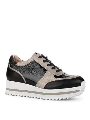 Ботинки EMILIA ESTRA. Цвет: черный