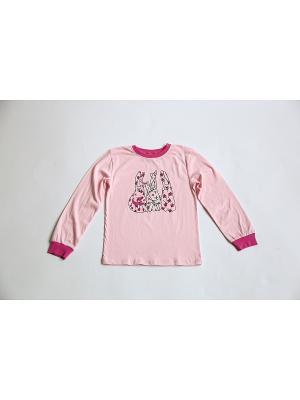 Пижама Iota. Цвет: розовый, фуксия
