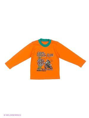 Лонгслив FLOBABY. Цвет: оранжевый