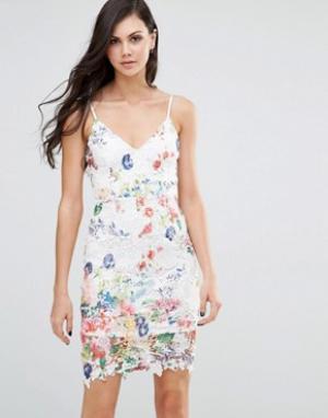 Lipstick Boutique Платье на бретельках с кружевом и цветочным принтом. Цвет: мульти