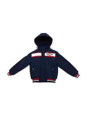 Куртка CIAO KIDS collection. Цвет: синий