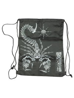 Сумка-рюкзак для обуви. Scorpion Bay. Цвет: черный, серый