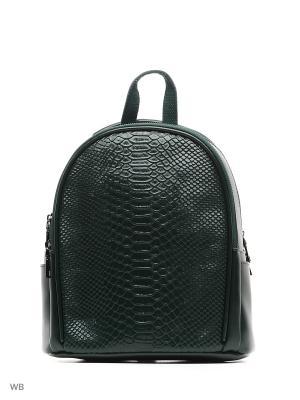 Рюкзак Malvinas. Цвет: темно-зеленый