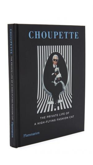 Choupette Books with Style