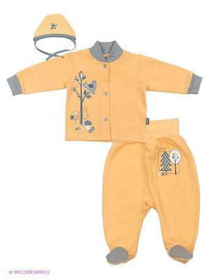 Комплекты одежды Лео. Цвет: оранжевый, серый