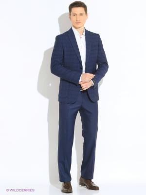 Мужские брюки Barkland. Цвет: синий