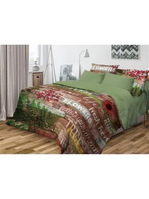 Комплект постельного белья Волшебная ночь Семейный Natural. Цвет: зеленый, коричневый, красный, желтый