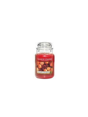 Свеча большая в стеклянной банке Мандарин и клюква Mandarin Cranberry 623 гр / 110-150 часов YANKEE CANDLE. Цвет: красный