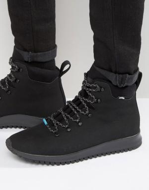 Native Ботинки на шнуровке AP Apex. Цвет: черный