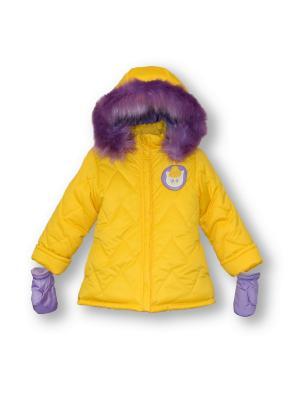Куртка Артус. Цвет: желтый