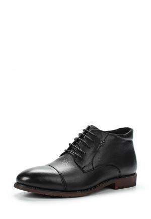 Ботинки классические Dino Ricci Select. Цвет: черный