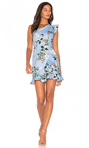 Платье layla Parker. Цвет: нежно-голубой