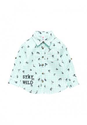 Рубашка Maloo. Цвет: бирюзовый