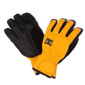Перчатки сноубордические DC Seger Glove Zinnia Shoes. Цвет: оранжевый