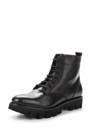 Ботинки Lamania. Цвет: черный
