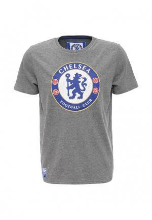 Футболка Atributika & Club™. Цвет: серый