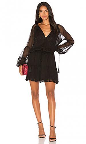 Мини платье с украшением jemma Karina Grimaldi. Цвет: черный