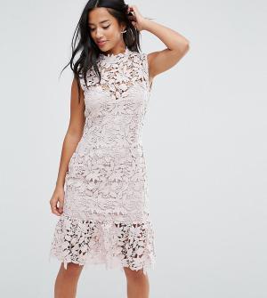 Paper Dolls Petite Кружевное платье с высоким вырезом и баской. Цвет: розовый